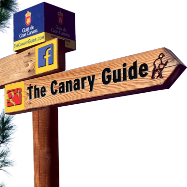 The Canary Guide
