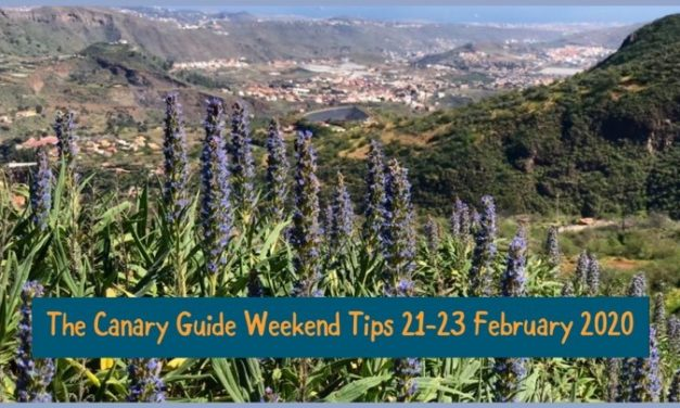 The Canary Guide Weekend Tips 21-23 February 2020