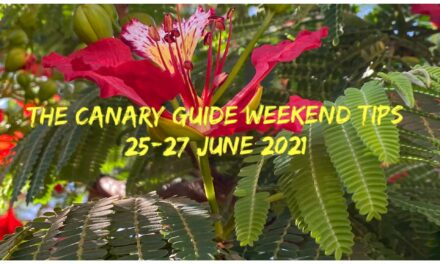 The Canary Guide Weekend Tips 25-27 June