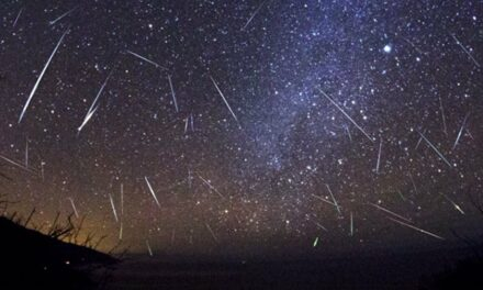 Look at the stars – Perseids Meteor Shower 2021